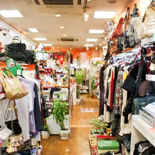 (有)木村屋化粧品店の写真