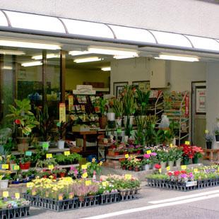 グリーンショップ花やの写真