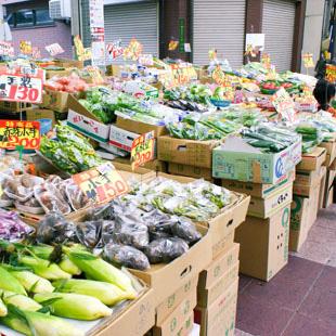 ベジタブル 山口商店[食料品]の写真
